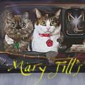 Mary Jill