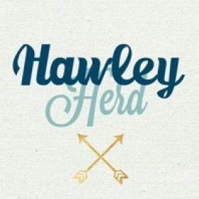 Profile photo of M. Hawley